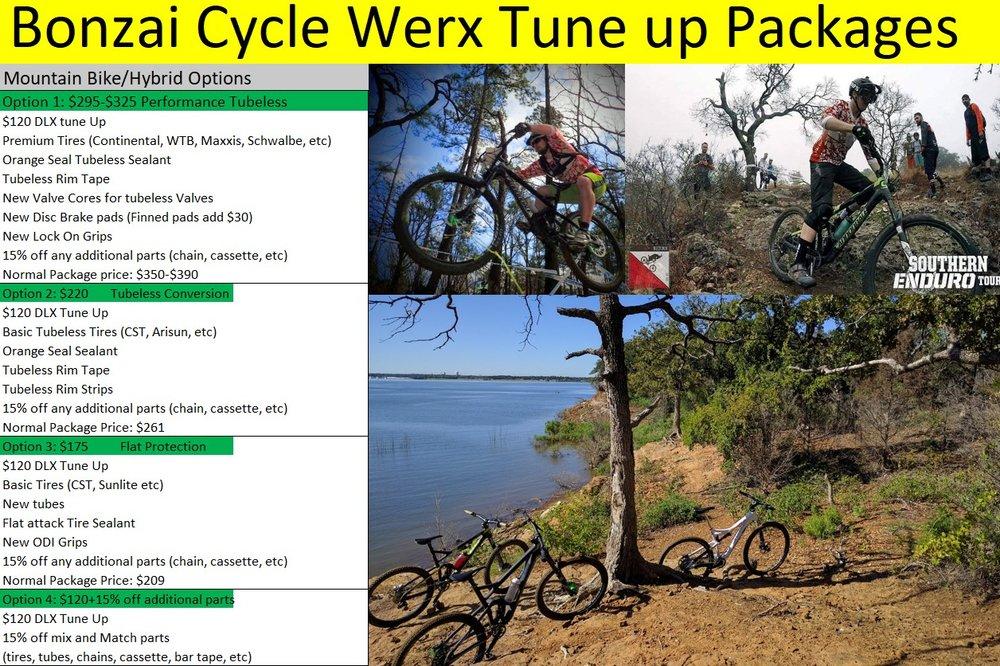 Professional Bike Repair - Bonzai Cycle Werx   North
