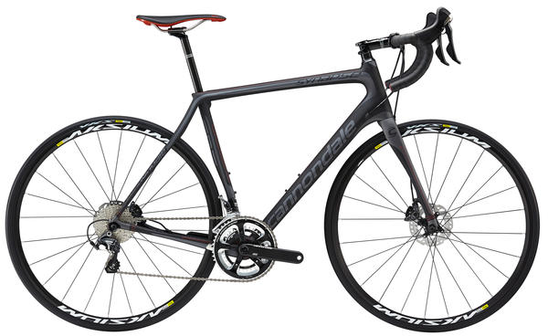 performance road bike rental