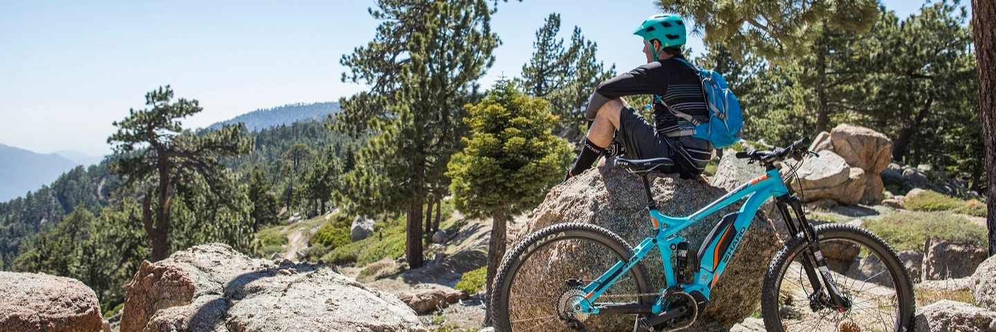 Click here to see the full Mountain Bike Catalog