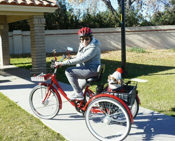 Electric trike conversions