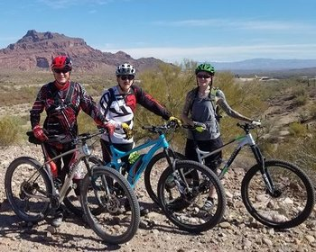 Haro Electric Mountain Bikes