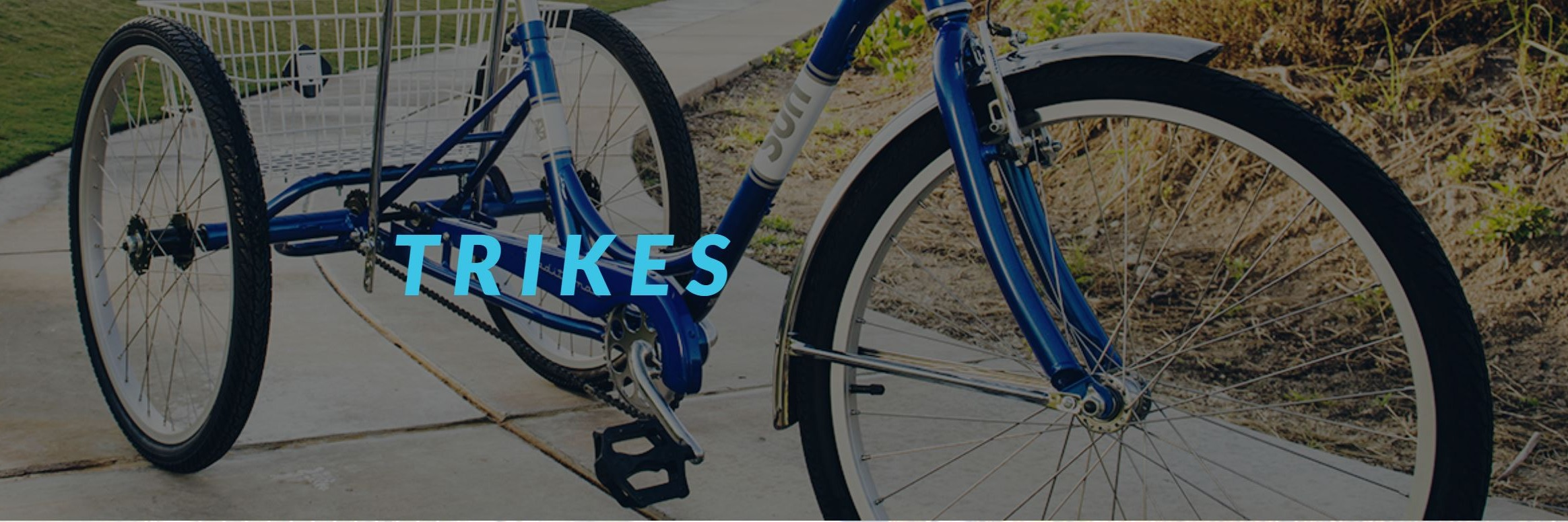 Trike and Recumbents of all shapes, styles and types