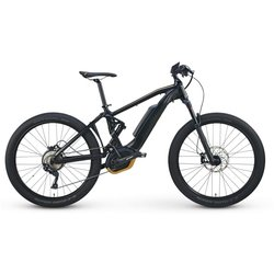 Raleigh Electric Lore DS iE EBike EMTB 28MPH