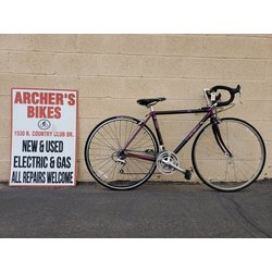 Trek 2120 Road Bike 48cm prpl (used)