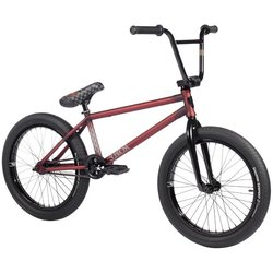Subrosa Novus Barraco - Ray Signature