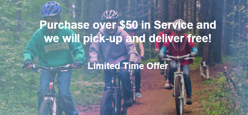 Pick-up and Delivery Bike Service in Utah County