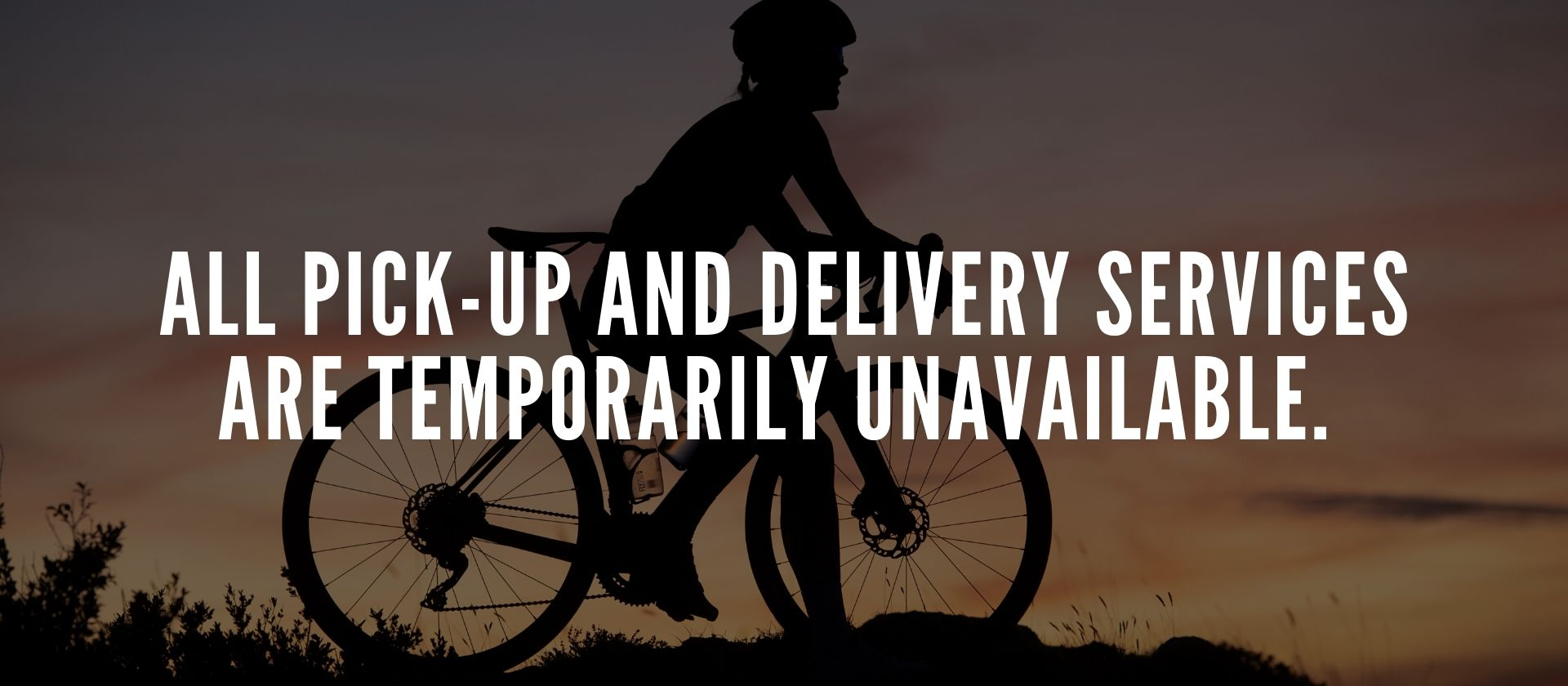 All pick-up and delivery services are temporarily unavailable.