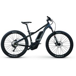 Raleigh Electric Tokul IE