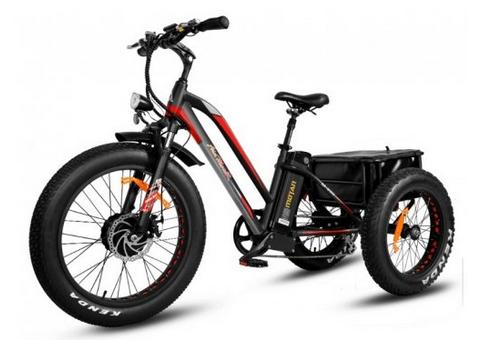 Addmotor MOTAN Electric Trike 750W 24-inch