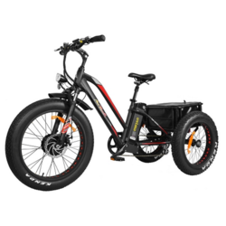 Addmotor MOTAN Electric Trike 500W 24-inch