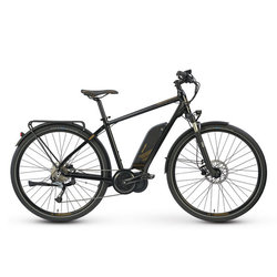 Raleigh Electric Cadent iE Step Over Black & Gold