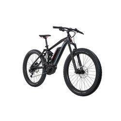 Raleigh Electric Kodiak iE eMTB