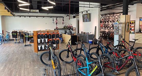 Elevation Cycles Denver East Colorado Bike Shop Service Tune Ups