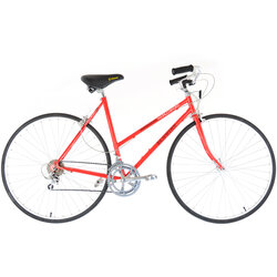 Schwinn World Sport Womens - 20.5