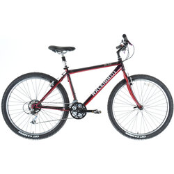 Raleigh M-50 - 17