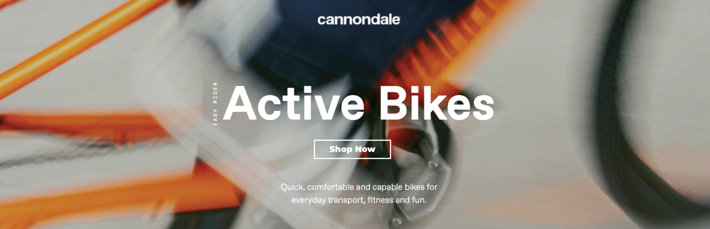 Cannondale Banner