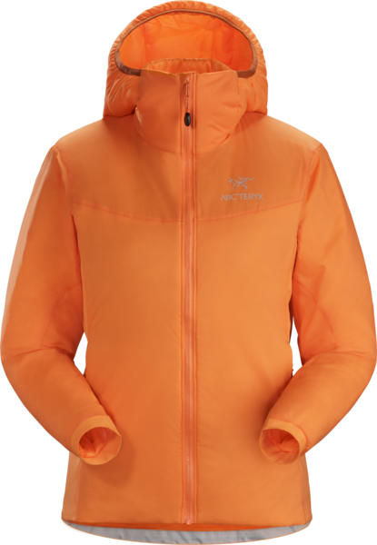 Arc'Teryx Atom LT Hoody Color: Awestruck