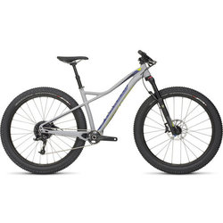 Specialized Ruze Expert 6Fattie - Used