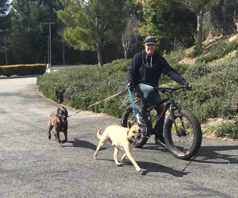Michael cycling with his dogs