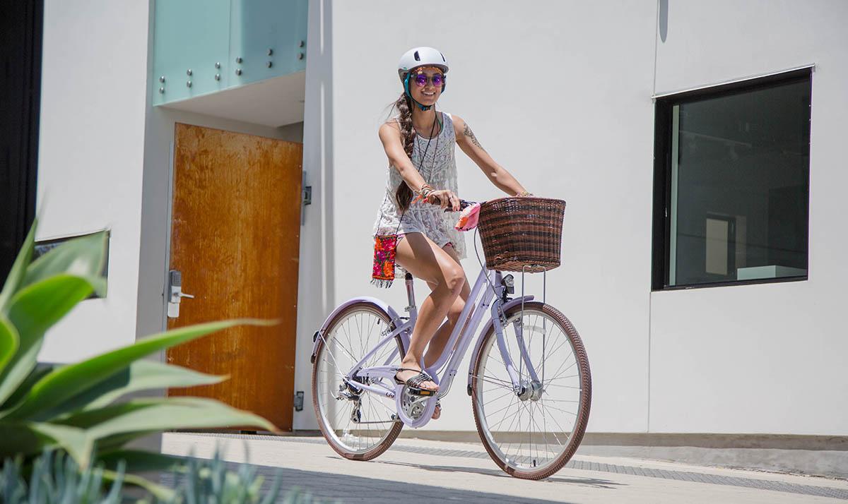 Bike Rentals - Dunedin