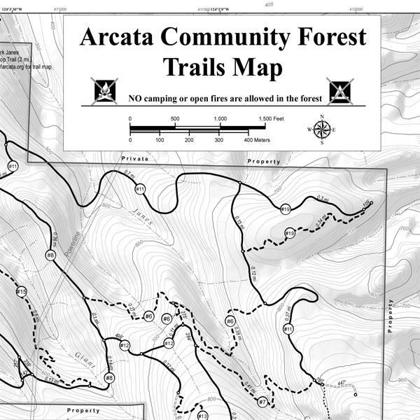 The Arcata Community Forest