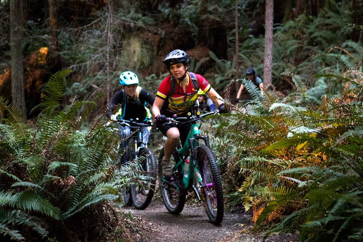 Riding in the Arcata Community Forest