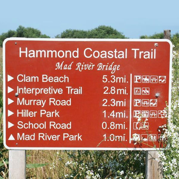 The Hammond Trail