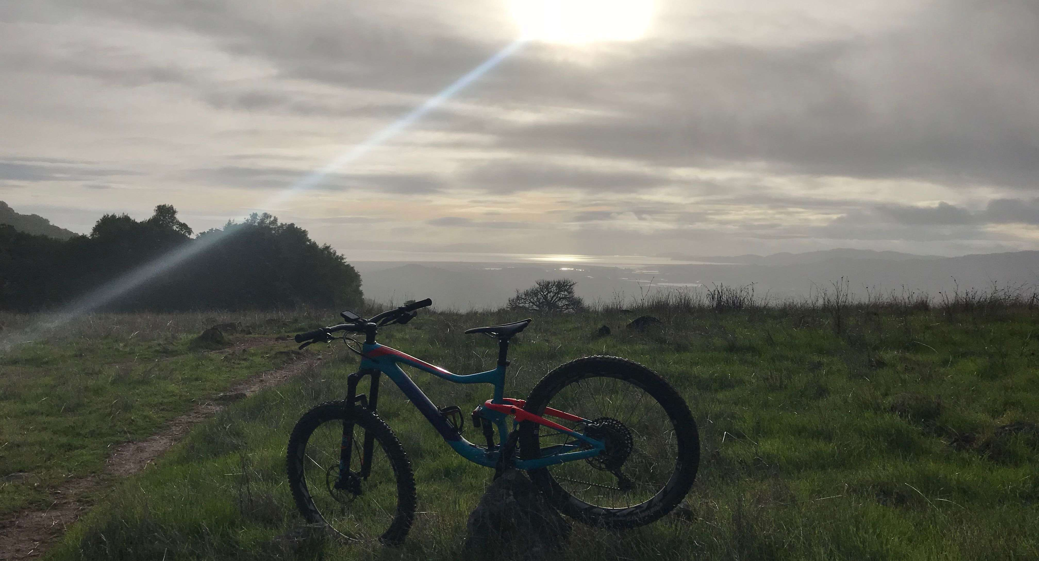 Mountain bike in a field