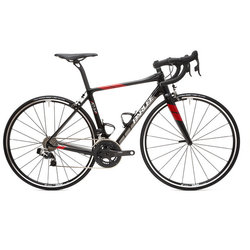 Parlee Cycles Altum LE (Frame only)