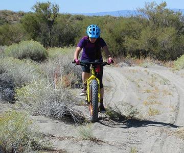 Mountain biker riding on sandy trail