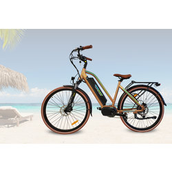 Mid Drive Electric Bikes MDC 500
