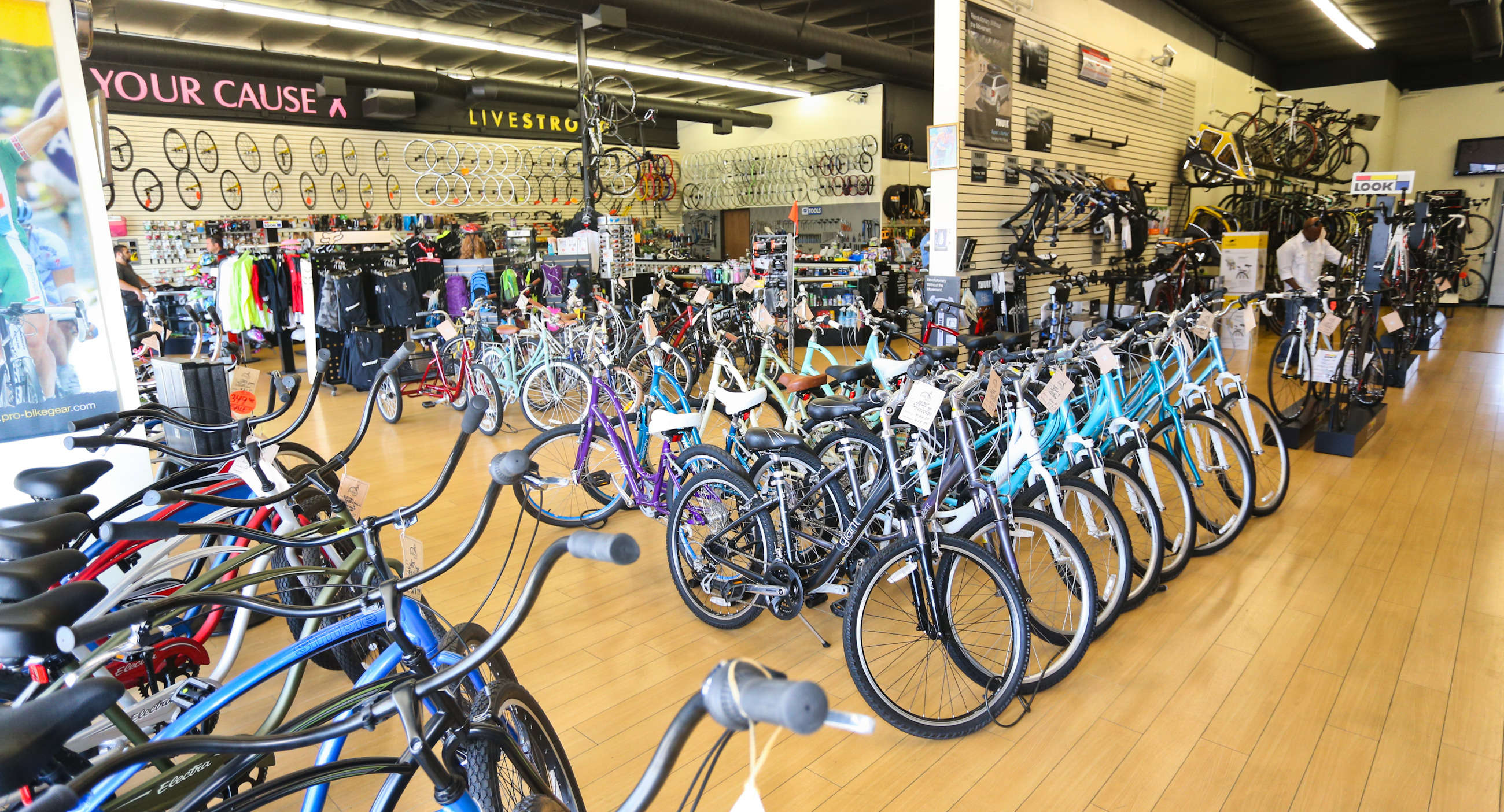 Our Bicycles in Store