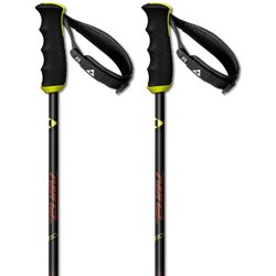 Fischer Skis RC4 The Curv CF