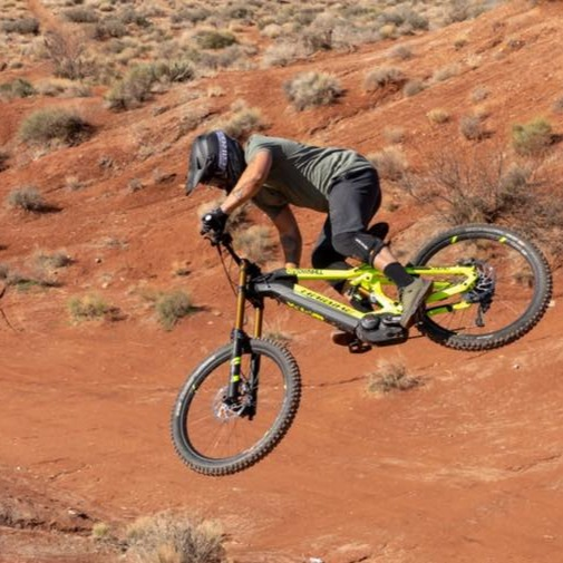 The Haibike DWNHLL 9.0 blasts up hills as well as down