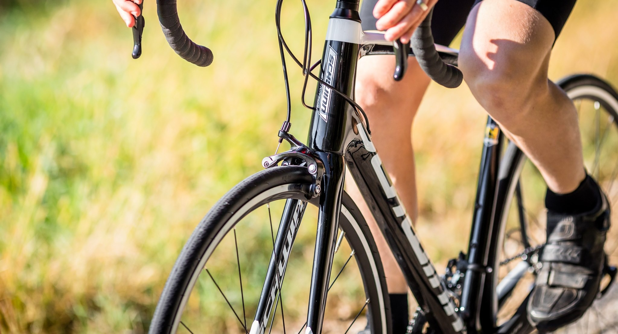 Take the fast way on Schwinn's Fastback Carbon