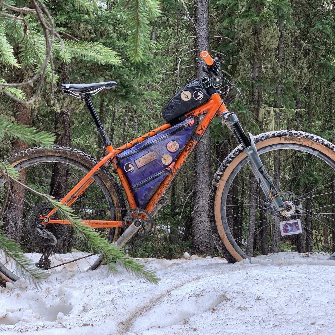 Surly Karate Monkey in the wild