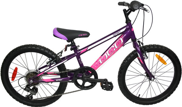 "DCO Spirit 20"" Girl's 7-Speed Bike"