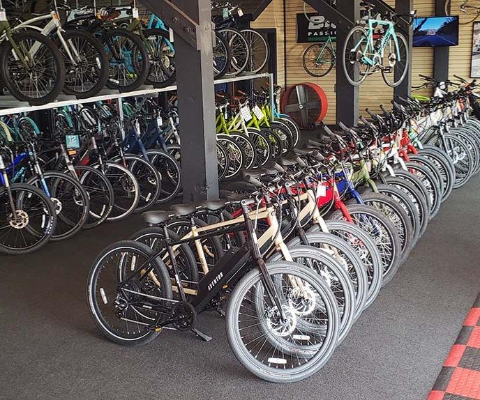 Bikes in Shop