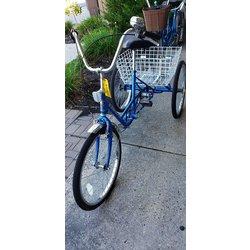 Wheelies Cignal Trike