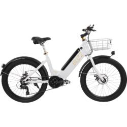 Niner Buzz E-Bike