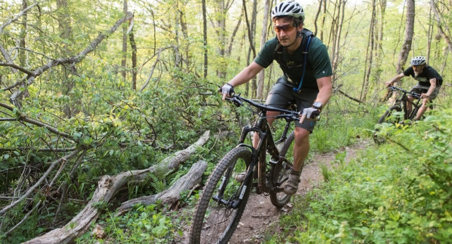 Mountain bikers trail riding