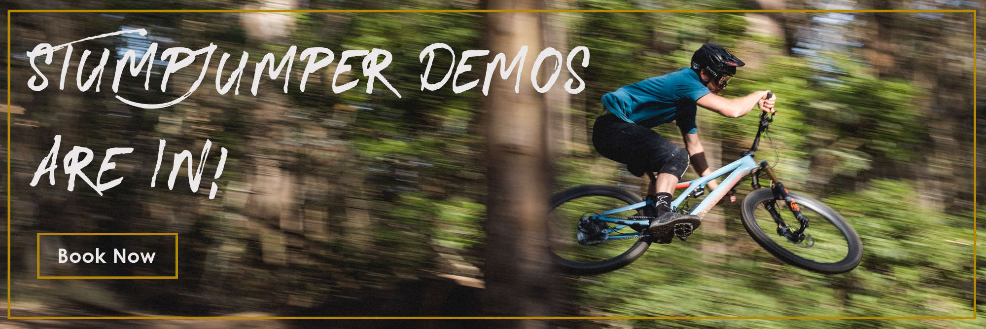 Stumpjumper Demo Bikes