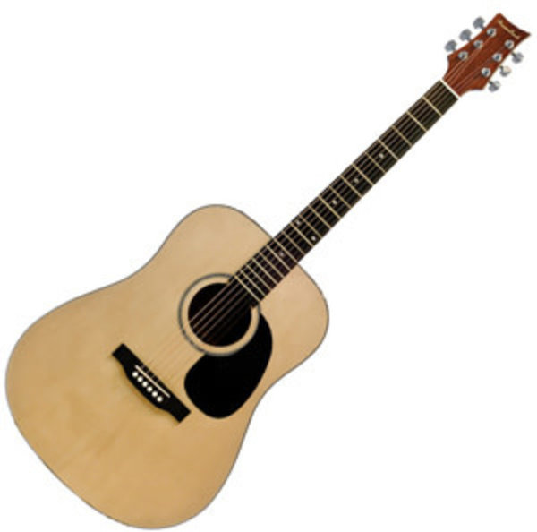 Beaver Creek 101 Series Dreadnought Natural