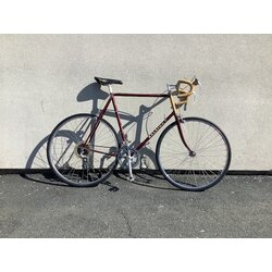 Raleigh RS-500