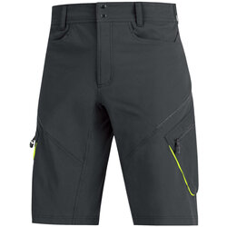 Gore Wear ELEMENT Shorts