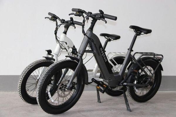 Magnum Electric Bikes Pathfinder