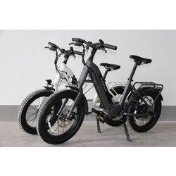 Magnum Electric Bikes Pathfinder