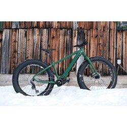 Moose Bicycle eFAT Electric Fat Bike