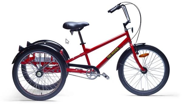Belize Tri Rider Industrial 3 speed Adult Trike