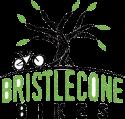 Bristlecone Bikes Home Page